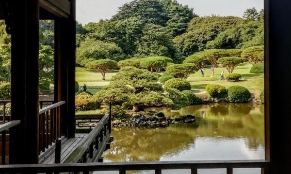 Per comprendere il Giappone
