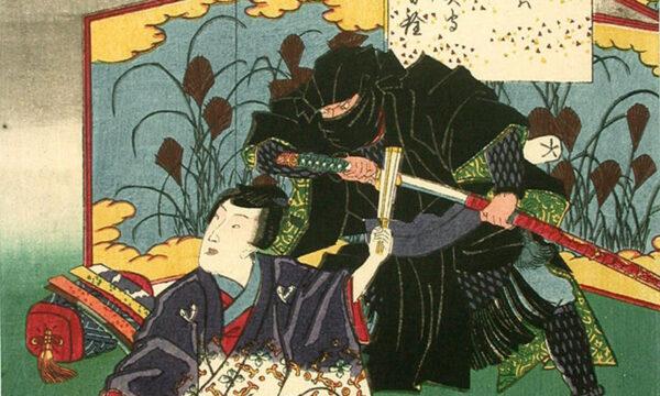Alla ricerca dei ninja